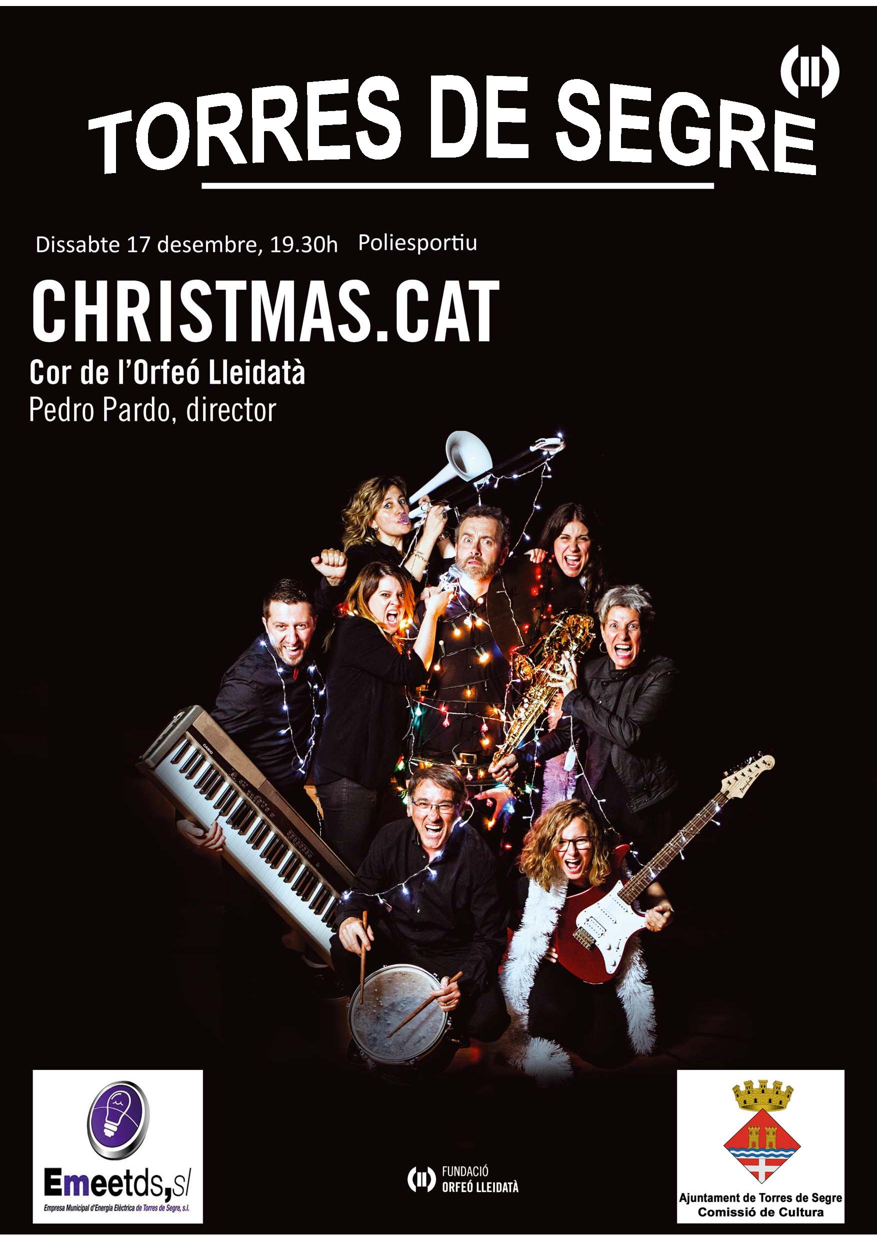 20161217_Christmas_cat-page-001